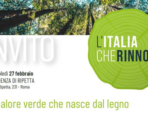 """Convention: """"Il calore verde che nasce dal legno"""". Roma, 27 febbraio 2019"""