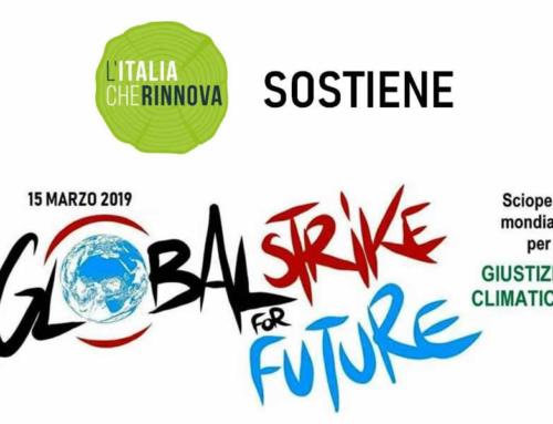 L'energia che nasce dal legno sostiene il Global Strike for Climate