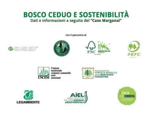 """Video """"Bosco ceduo e sostenibilità"""", L'Italia che Rinnova è tra i patrocinatori"""